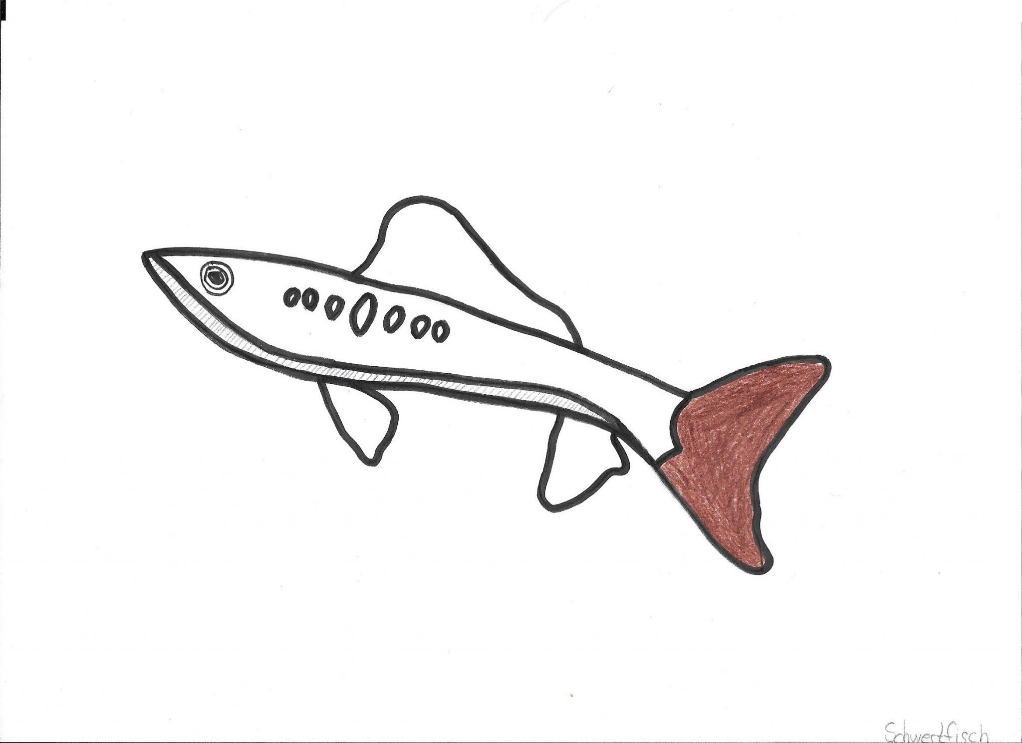Schwertfisch aus Machete Alessandro
